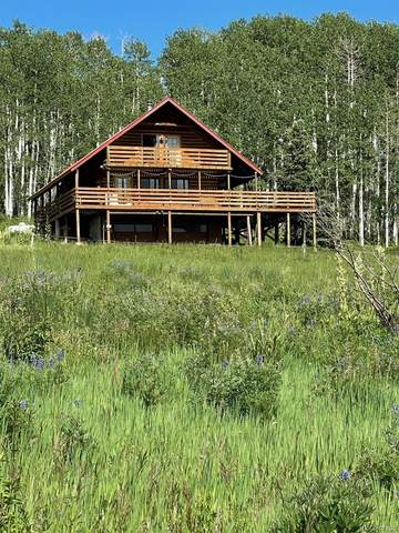 41014 Beaver Trail Lane, Paonia, CO 81428 (#3875965) :: The Gilbert Group