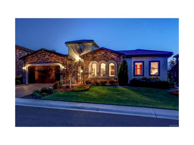 9463 Vista Hill Lane, Lone Tree, CO 80124 (#3879123) :: Colorado Team Real Estate