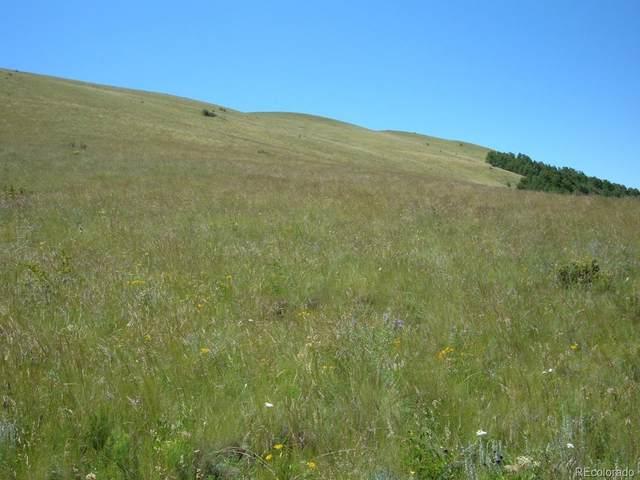 TBD L302 Commanche Trail, Westcliffe, CO 81252 (#3881325) :: My Home Team