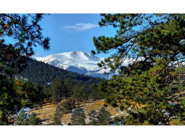 33560 Mount Wilson Peak Trail, Pine, CO 80470 (MLS #3883071) :: 8z Real Estate