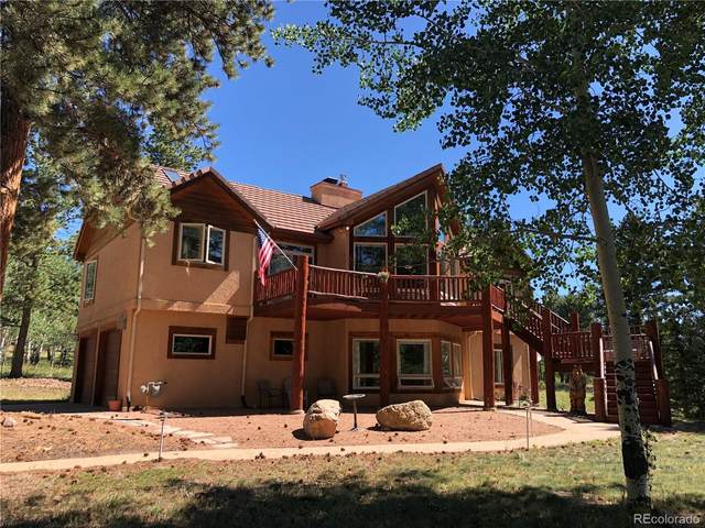 105 Bald Eagle View, Divide, CO 80814 (#3883105) :: The DeGrood Team