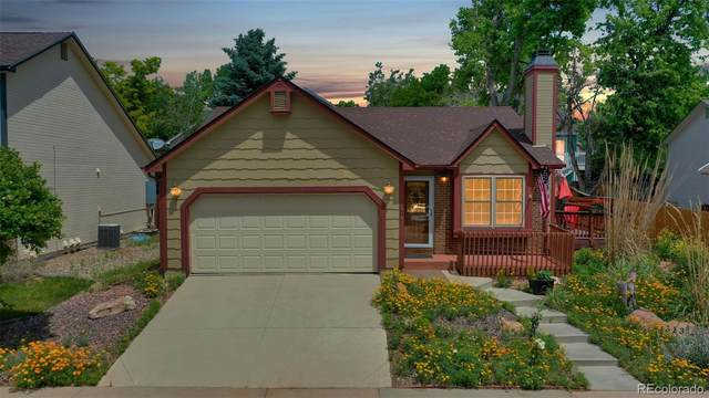 313 Mulberry Circle, Broomfield, CO 80020 (MLS #3885943) :: 8z Real Estate