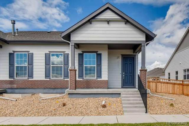 787 Colorado River Avenue, Brighton, CO 80601 (#3886121) :: Briggs American Properties