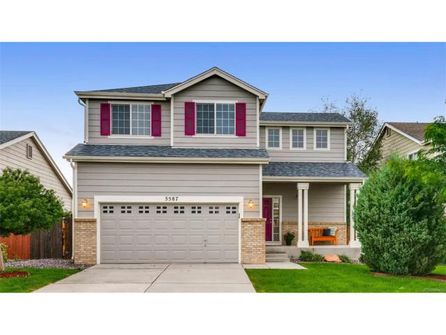 5587 Rose Ridge Lane, Colorado Springs, CO 80917 (MLS #3886394) :: 8z Real Estate