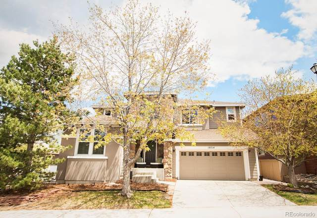 10714 Chadsworth Lane, Highlands Ranch, CO 80126 (#3887216) :: Compass Colorado Realty