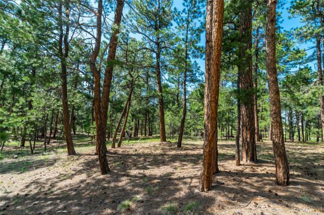 19085 Hilltop Pines Path, Monument, CO 80132 (#3888005) :: James Crocker Team