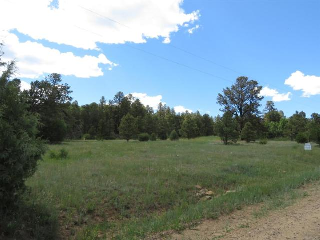 Lot 118 Spanish Highlands, Boncarbo, CO 81024 (#3889022) :: The DeGrood Team