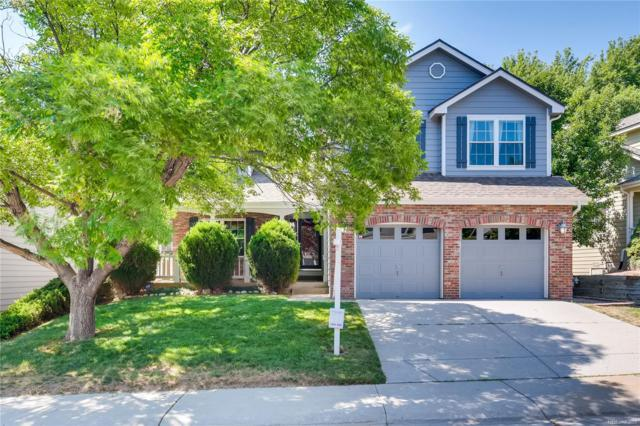 9925 Spring Hill Street, Highlands Ranch, CO 80129 (#3890354) :: HomePopper