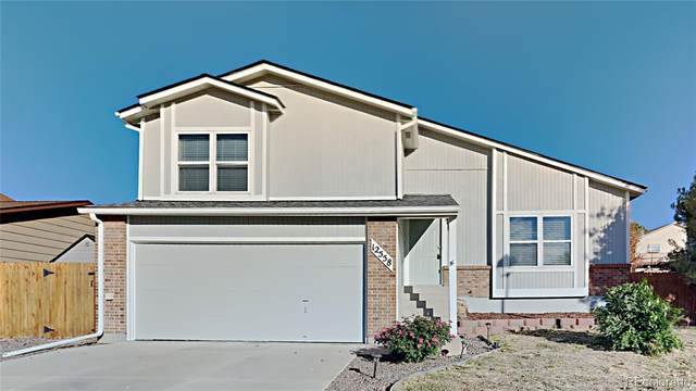 12558 Country Meadows Drive, Parker, CO 80134 (#3890877) :: HomeSmart