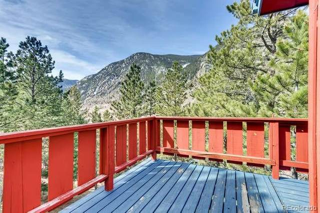 2055 Blue Bird Drive, Georgetown, CO 80444 (MLS #3894900) :: 8z Real Estate