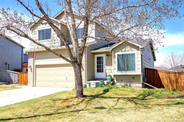 10427 Hyacinth Place, Highlands Ranch, CO 80129 (#3894914) :: The Peak Properties Group