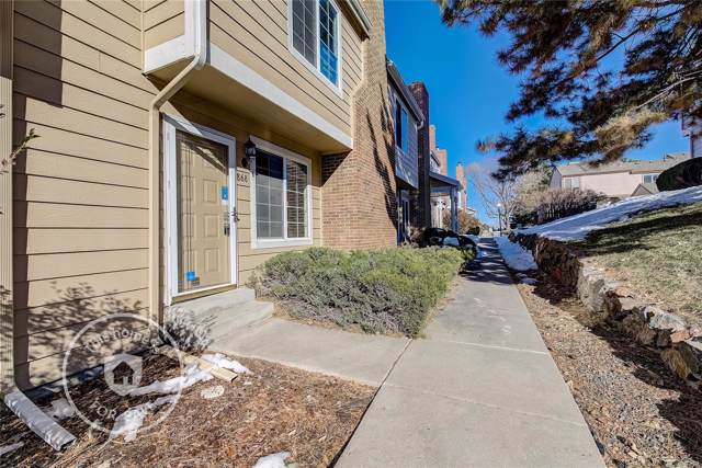 868 Summer Drive, Highlands Ranch, CO 80126 (#3899658) :: The DeGrood Team