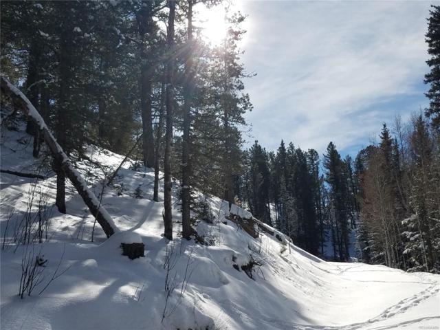 848 E Bison Creek Trail, Divide, CO 80814 (#3907216) :: Colorado Home Finder Realty
