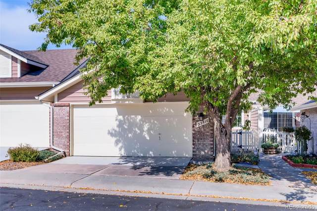 3381 W 114th Circle E, Westminster, CO 80031 (#3909293) :: James Crocker Team