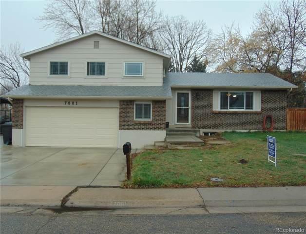 7081 Deframe Court, Arvada, CO 80004 (MLS #3911664) :: 8z Real Estate