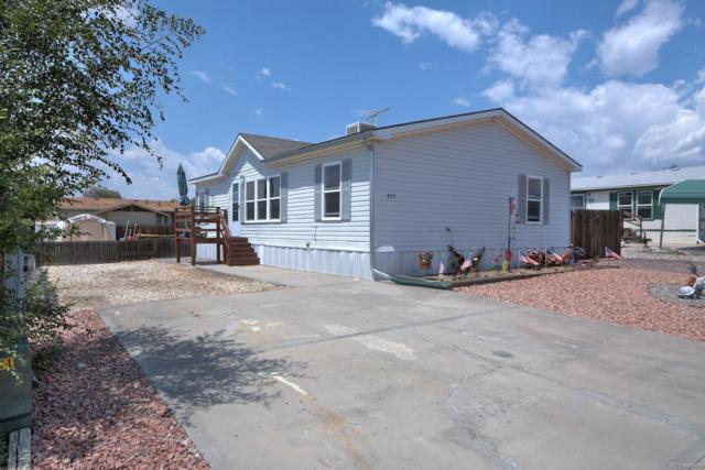 807 Robbie Lane, Canon City, CO 81212 (#3915289) :: Bring Home Denver
