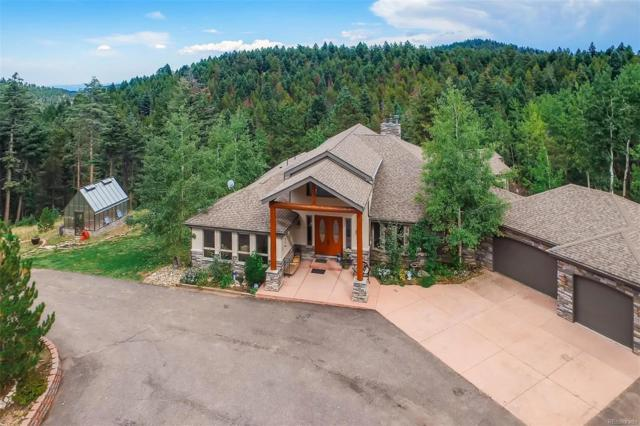12544 Wild Trout Trail, Conifer, CO 80433 (#3917189) :: Sellstate Realty Pros