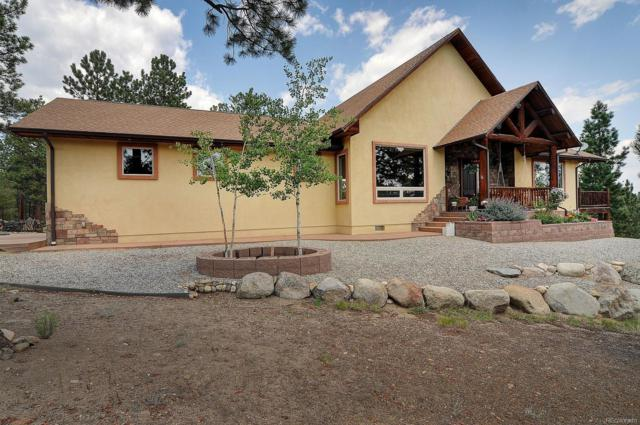 13103 County Road 261 J, Nathrop, CO 81236 (#3918770) :: The DeGrood Team