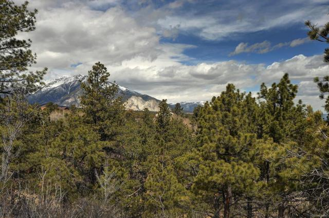 Lot 164 County Road 261A, Nathrop, CO 81236 (#3919448) :: The Heyl Group at Keller Williams