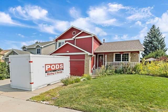 6088 S Pierson Court, Littleton, CO 80127 (MLS #3920143) :: Find Colorado