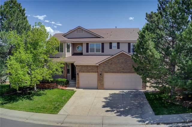 592 Stonemont Drive, Castle Pines, CO 80108 (#3923376) :: The Gilbert Group