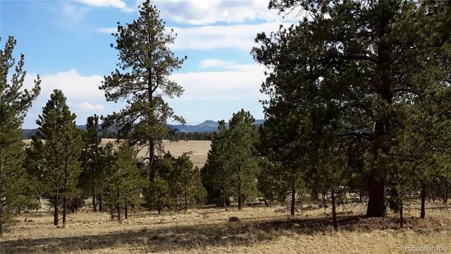 2470 Doe Valley Road, Guffey, CO 80820 (#3923790) :: Venterra Real Estate LLC
