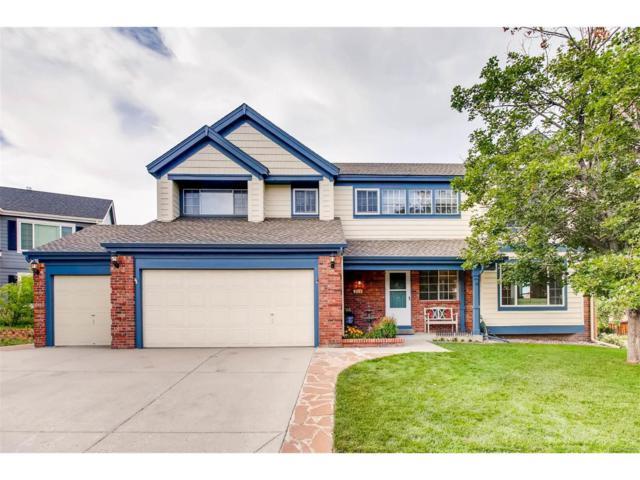 9205 Madras Court, Highlands Ranch, CO 80130 (MLS #3925290) :: 8z Real Estate