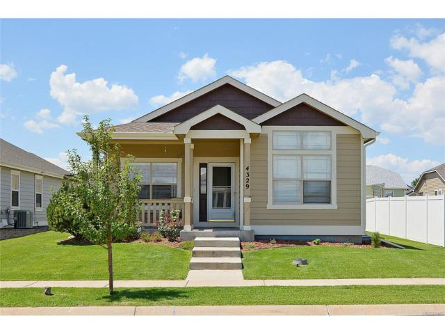 4329 Paintbrush Drive, Evans, CO 80620 (MLS #3925928) :: 8z Real Estate