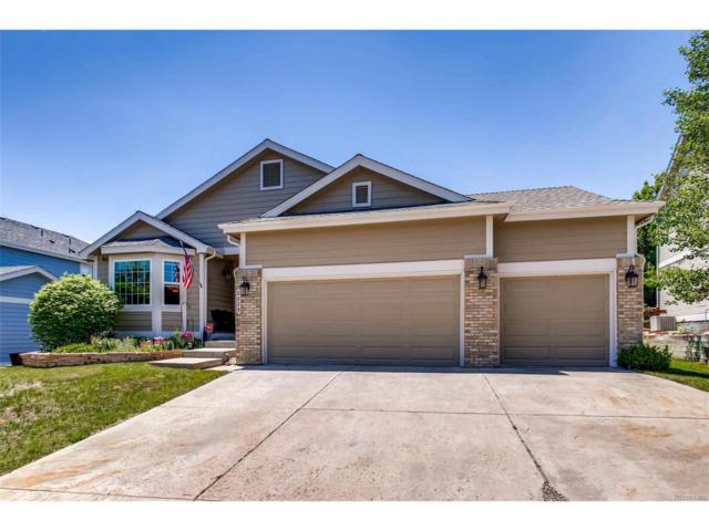 2229 Jute Lane, Castle Rock, CO 80109 (#3926077) :: The Peak Properties Group