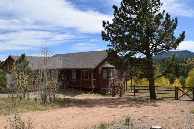 154 Sunset Drive, Bailey, CO 80421 (#3927766) :: Bring Home Denver