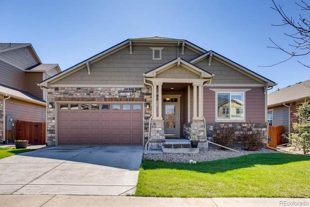 850 Campfire Drive, Fort Collins, CO 80524 (MLS #3927945) :: 8z Real Estate