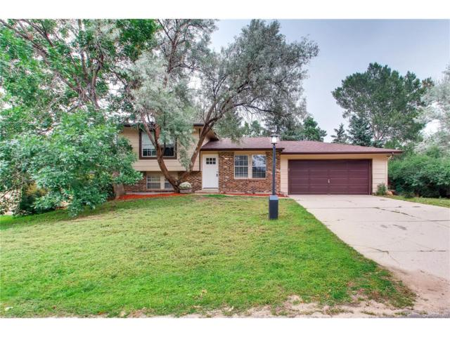 2070 Rusty Hinge Drive, Colorado Springs, CO 80920 (MLS #3934279) :: 8z Real Estate