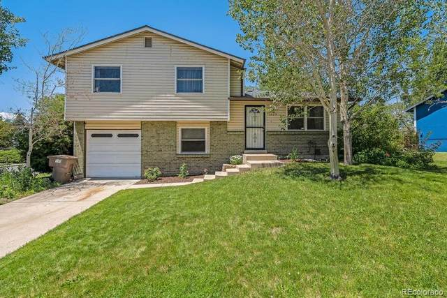 7505 Otis Street, Arvada, CO 80003 (#3934991) :: The Harling Team @ Homesmart Realty Group