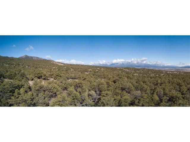 5466 Longbranch Road, Salida, CO 81201 (MLS #3939694) :: 8z Real Estate