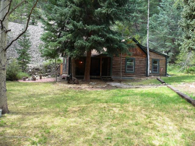 2225 Fall River Road, Idaho Springs, CO 80452 (MLS #3940392) :: 8z Real Estate