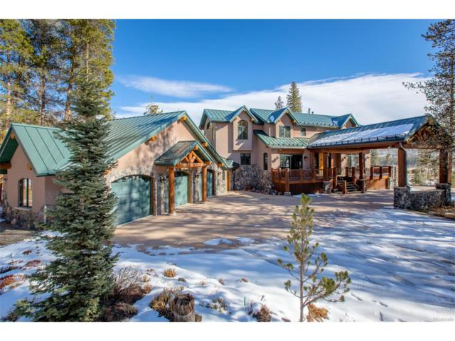 25 Browsing Meadow, Fraser, CO 80442 (#3946546) :: Wisdom Real Estate