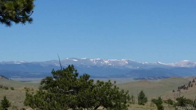 6022 Marca Monte Trail, Hartsel, CO 80449 (MLS #3947440) :: Bliss Realty Group