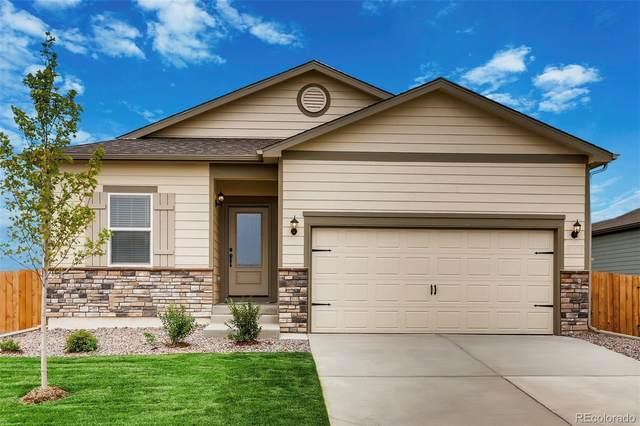 985 Cascade Falls Street, Severance, CO 80550 (#3947700) :: Venterra Real Estate LLC