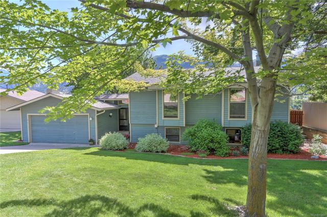 1314 Riverview Avenue, Glenwood Springs, CO 81601 (#3950708) :: HomePopper