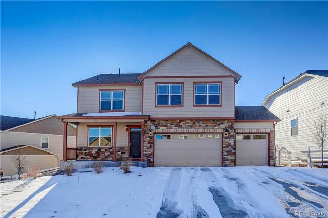 5854 High Timber Circle, Castle Rock, CO 80104 (#3951761) :: Hudson Stonegate Team