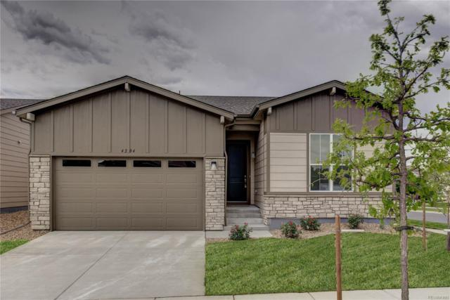 4224 Prairie Drive, Brighton, CO 80601 (#3952594) :: The City and Mountains Group