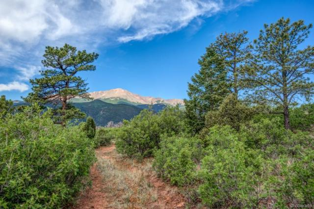 3770 Outback Vista Point, Colorado Springs, CO 80904 (#3952723) :: The Peak Properties Group