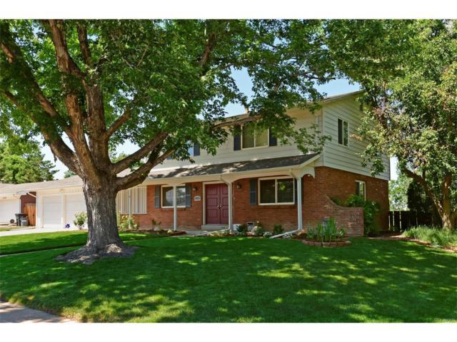 6309 W Roxbury Place, Littleton, CO 80128 (MLS #3953043) :: 8z Real Estate