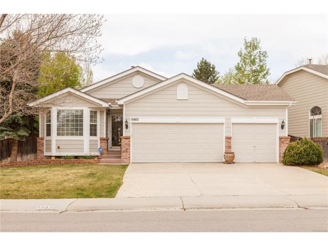 6882 Lions Head Parkway, Littleton, CO 80124 (#3956549) :: RE/MAX Professionals