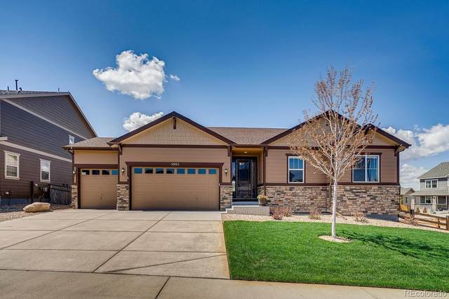 5995 Hoofbeat Place, Castle Rock, CO 80108 (#3958357) :: The Griffith Home Team