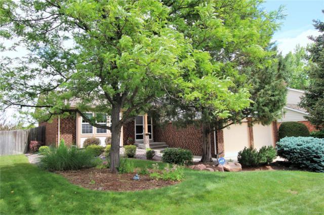7816 S Pierce Way, Littleton, CO 80128 (MLS #3962391) :: 8z Real Estate