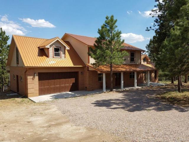 1625 Keepsake Loop, Westcliffe, CO 81252 (#3962872) :: Compass Colorado Realty