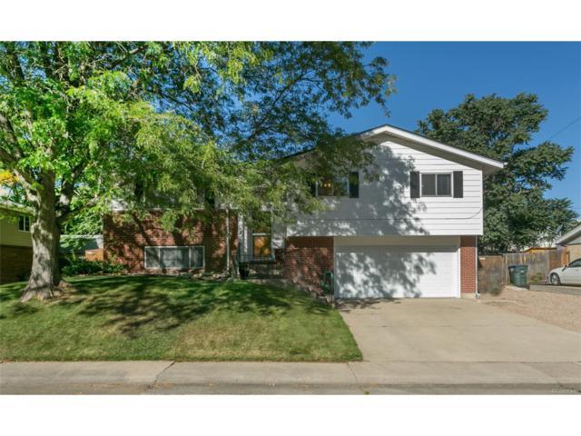 10133 Pecos Street, Northglenn, CO 80260 (MLS #3969013) :: 8z Real Estate