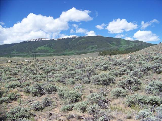Prcl 11 Trct 14 County Road 28A, Twin Lakes, CO 81251 (#3972095) :: The DeGrood Team