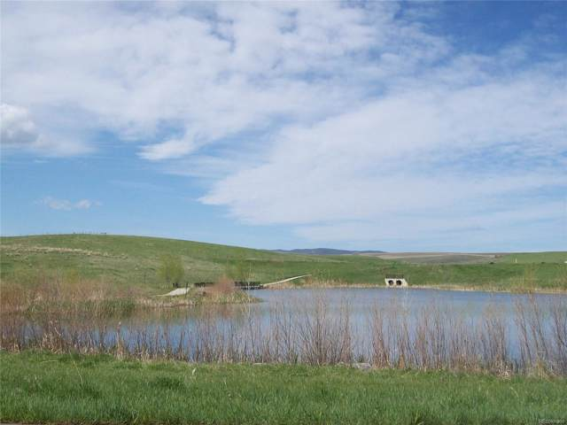 358 Lake View Drive, Hayden, CO 81639 (MLS #3973395) :: 8z Real Estate